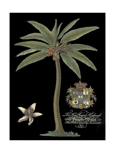 Palm on Black I--Art Print