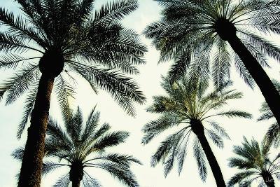 Palm One-Carla West-Art Print