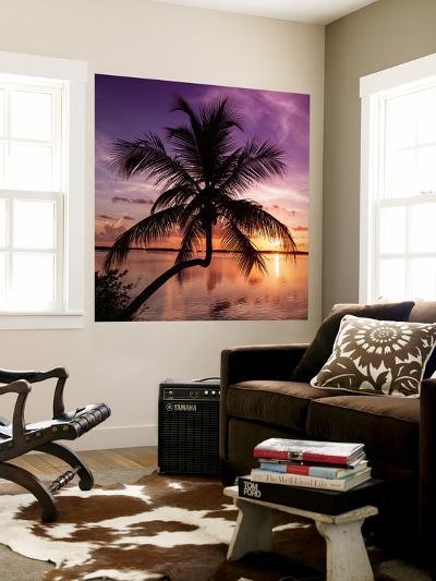 Palm Paradise at Sunset - Florida - USA-Philippe Hugonnard-Wall Mural