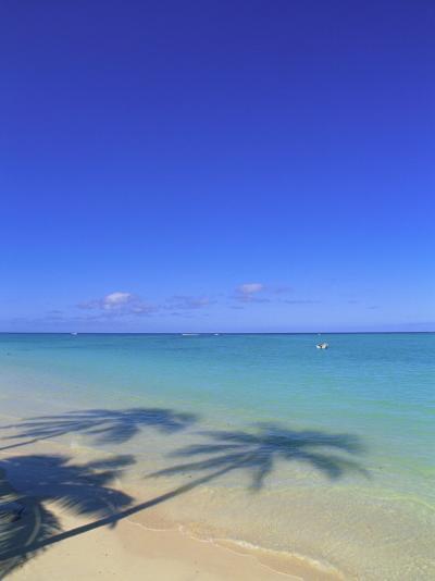 Palm Shadow on Beach-Douglas Peebles-Photographic Print