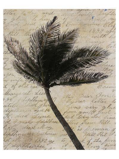 Palm Silhouette--Art Print