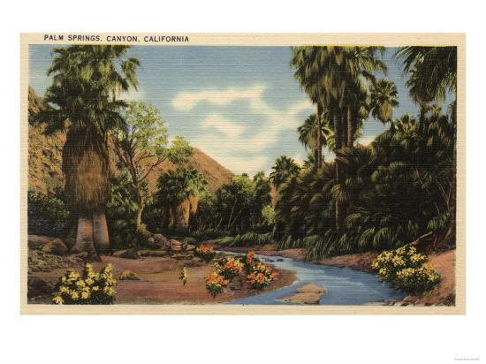 Palm Springs, California - View of Palm Springs Canyon-Lantern Press-Art Print
