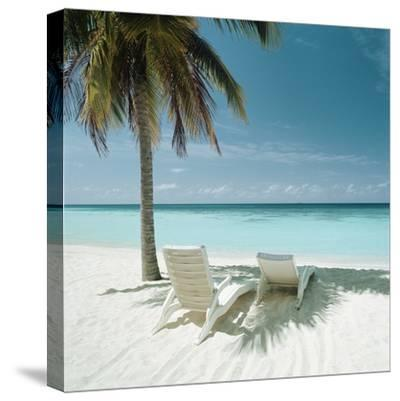 Palm Tree and Beach Chair