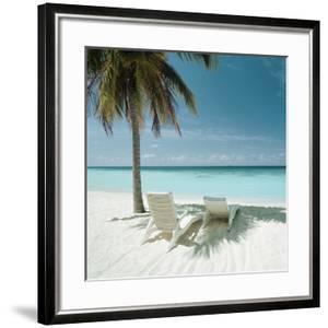 Palm Tree and Beach Chair