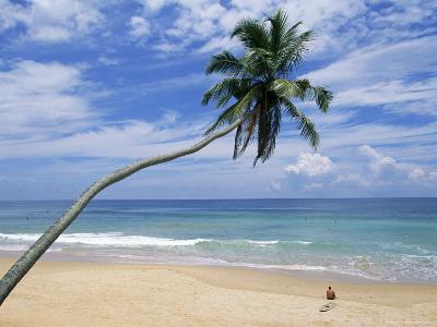 Palm Tree and Surfer, Hikkaduwa Beach, Island of Sri Lanka, Indian Ocean, Asia-Yadid Levy-Photographic Print