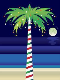 Palm Tree Decorated With Christmas Lights Photo By Art Com