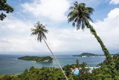 Palm Tree Landscape Near Iboih, Pulau Weh Island, Aceh Province, Sumatra, Indonesia, Southeast Asia-Matthew Williams-Ellis-Photographic Print