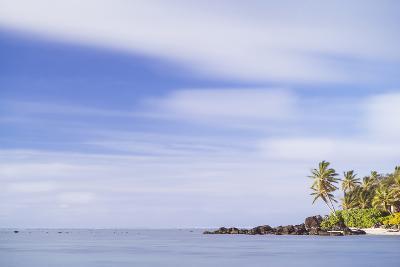 Palm Tree Long Exposure, Muri, Rarotonga, Cook Islands, South Pacific, Pacific-Matthew Williams-Ellis-Photographic Print