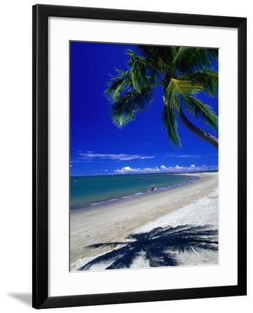 Palm Tree on Beach, Fiji-David Wall-Framed Photographic Print