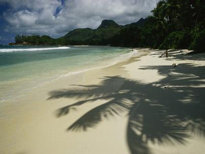 Palm Tree Shadows on a Beach with Gentle Surf and Mountain Backdrop-Bill Curtsinger-Photographic Print