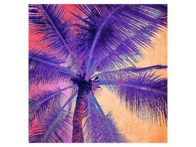 Palm Tree Sunset--Art Print