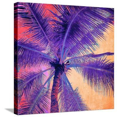 Palm Tree Sunset--Stretched Canvas Print