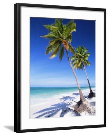 Palm Trees, White Sandy Beach and Indian Ocean, Jambiani