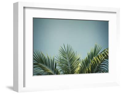 Palm Tree-neirfy-Framed Art Print