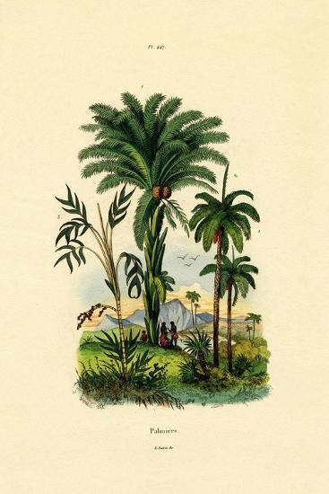 Palm Trees, 1833-39--Giclee Print