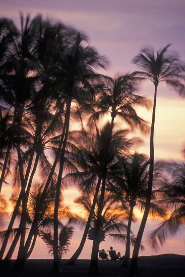 Palm Trees and a Couple in Beach Chairs at Sunset at Anaehoomalu Bay-Design Pics Inc-Photographic Print