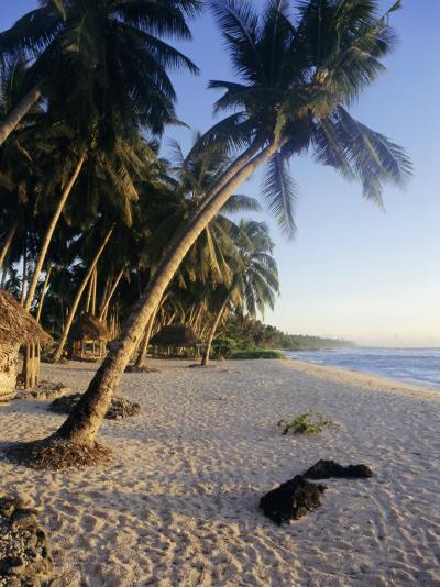 Palm Trees and Beach at Sunset, Western Samoa, South Pacific Islands, Pacific-Maurice Joseph-Photographic Print