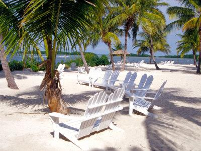 Charmant Palm Trees And Beach Chairs, Florida Keys, Florida, USABy Terry Eggers
