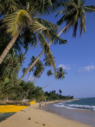 Palm Trees and Beach, Unawatuna, Sri Lanka-Charles Bowman-Photographic Print
