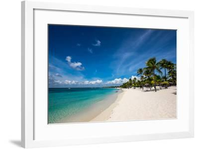 Palm Trees and Clean Beaches on the Caribbean Sea-Jonathan Irish-Framed Photographic Print