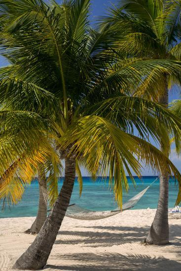 Palm Trees and Hammock at Seven Mile Beach, Grand Cayman, West Indies-Brian Jannsen-Photographic Print