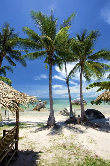 Palm Trees and Lamai Beach, Koh Samui, Thailand, Southeast Asia, Asia-Lee Frost-Photographic Print