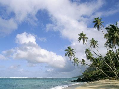 https://imgc.artprintimages.com/img/print/palm-trees-and-sea-lalomanu-beach-upolu-island-western-samoa_u-l-p1wy3a0.jpg?p=0