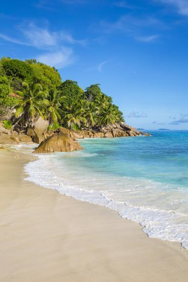 Palm Trees and Tropical Beach, La Digue, Seychelles-Jon Arnold-Photographic Print