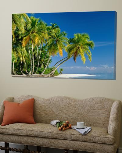 Palm Trees and Tropical Beach, Maldive Islands, Indian Ocean-Steve Vidler-Loft Art