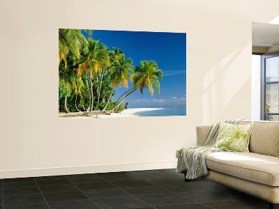 Palm Trees and Tropical Beach, Maldive Islands, Indian Ocean-Steve Vidler-Giant Art Print