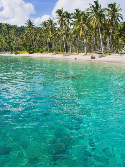 Palm Trees and Turquoise Water, Nippah Beach, Lombok, West Nusa Tenggara, Indonesia, Southeast Asia-Matthew Williams-Ellis-Photographic Print