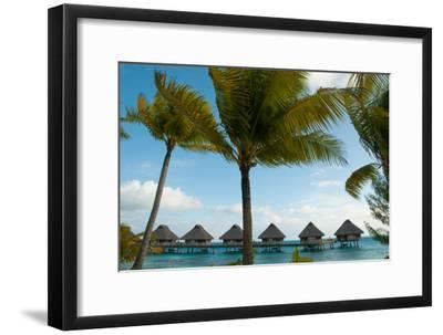 Palm Trees and Vacation Cottages over Water on Bora Bora-Karen Kasmauski-Framed Photographic Print