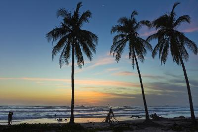 Palm Trees at Sunset on Playa Guiones Surf Beach at Sunset-Rob Francis-Photographic Print