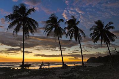 Palm Trees at Sunset on Playa Guiones Surfing Beach-Rob Francis-Photographic Print