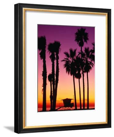 Palm Trees at Sunset, Venice Beach, Los Angeles, Los Angeles, California, USA-Richard Cummins-Framed Photographic Print