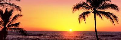 Palm Trees at the Coast at Sunset, Waikoloa, Hawaii County, Hawaii, USA--Photographic Print