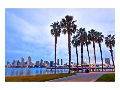 Palm Trees City San Diego Sign--Premium Giclee Print