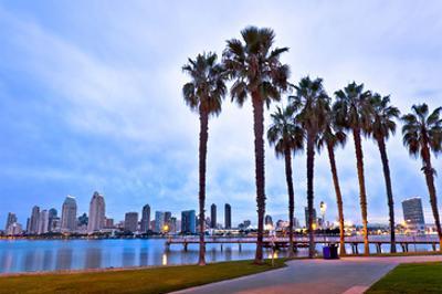 Palm Trees City San Diego Sign