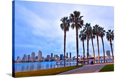 Palm Trees City San Diego Sign--Stretched Canvas Print