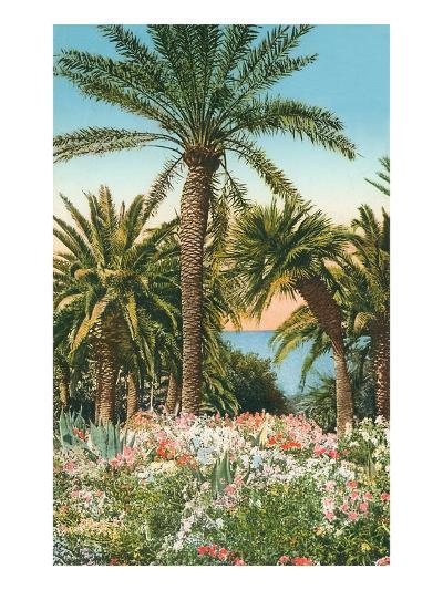 Palm Trees, Flowers and Agave--Art Print
