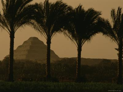 Palm Trees Frame a View of the Step Pyramid of Djoser-Kenneth Garrett-Photographic Print