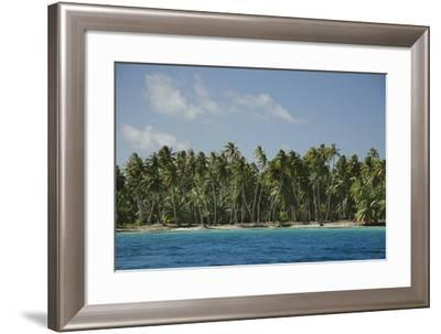 Palm Trees in the French Polynesian Atoll of Ahe-Andy Bardon-Framed Photographic Print