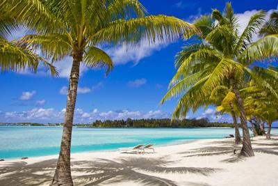 https://imgc.artprintimages.com/img/print/palm-trees-lounge-chairs-and-white-sand-on-a-tropical-beach_u-l-poku680.jpg?p=0