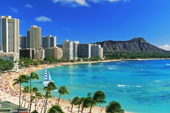 Palm Trees On The Beach Diamond Head Waikiki Beach Oahu Honolulu Hawaii Usa Photographic Print By Art Com