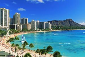 Palm trees on the beach, Diamond Head, Waikiki Beach, Oahu, Honolulu, Hawaii, USA