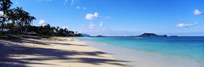 Palm Trees on the Beach, Lanikai Beach, Oahu, Hawaii, USA--Photographic Print