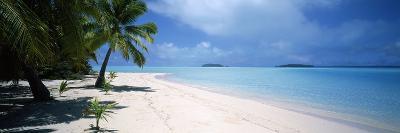 Palm Trees on the Beach, Tapuaetai, Aitutaki, Cook Islands--Photographic Print
