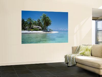 Palm Trees on the Beach, Tikehau, French Polynesia--Giant Art Print