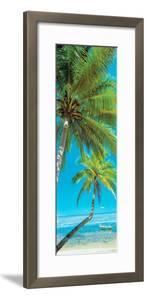 Palm trees on the beach, Viti Levu, Palm Cove, Fiji