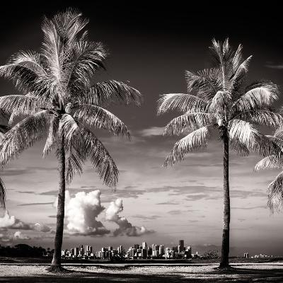 Palm Trees overlooking Downtown Miami - Florida-Philippe Hugonnard-Photographic Print